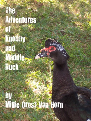 The Adventures Of Knobby And Maddie Duck by Millie Orosz Van Horn from Bookbaby in Teen Novel category