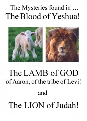 The Mysteries Found in The Blood of Yeshua! - The Lamb of God, of Aaron, of the Tribe of Levi!  And The Lion of Judah! by Richard Aaron Honorof from Bookbaby in Religion category