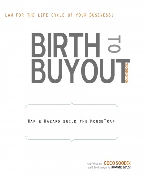 Birth to Buyout - Law for the Life Cycle of Your Business by Coco Soodek from Bookbaby in Finance & Investments category