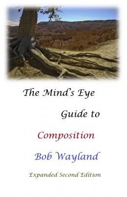The Mind's Eye Guide to Composition - Painless Photographic Compositions by Bob Wayland from Bookbaby in General Novel category