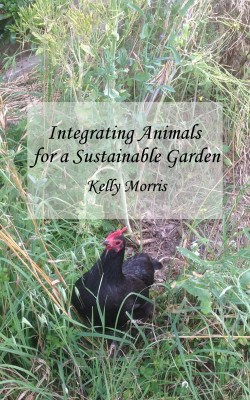 Integrating Animals for a Sustainable Garden by Kelly Morris from  in  category