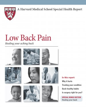 Low Back Pain - Healing your aching back by Jeffrey N. Katz, MD from Bookbaby in Business & Management category