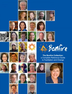 The Bonfire Collection - A Complete Reference Guide to Facilitation and Change by Beatrice Briggs from Bookbaby in Finance & Investments category