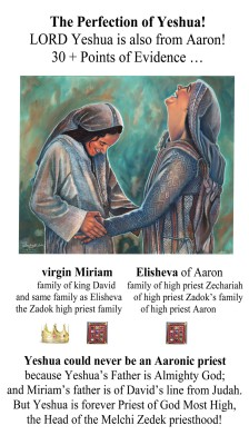 The Perfection of Yeshua! - LORD Yeshua is also from Aaron!  30 + Points of Evidence by Richard Aaron Honorof from Bookbaby in Religion category