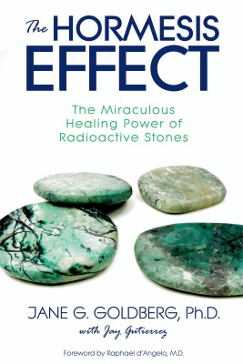 The Hormesis Effect by Jay Gutierrez from Bookbaby in Family & Health category