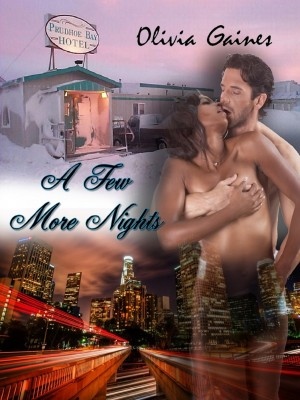 A Few More Nights by Olivia Gaines from Bookbaby in Romance category