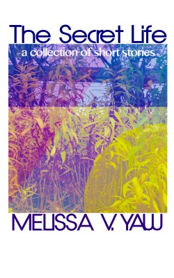 The Secret Life - A Collection of Short Stories by Melissa V. Yaw from Bookbaby in General Novel category