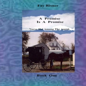 A Promise Is A Promise - Nurse Hal Among The Amish by Fay Risner from Bookbaby in General Novel category