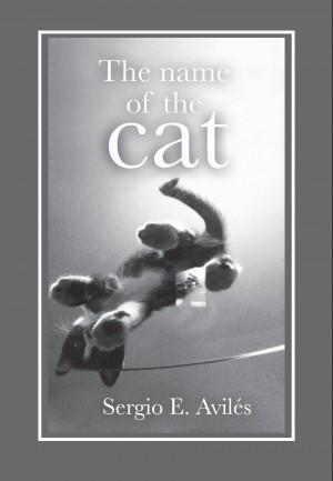 The Name of the Cat by Sergio E. Avilés from Bookbaby in Romance category