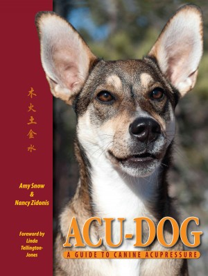 Acu-Dog: A Guide to Canine Acupressure by Nancy Zidonis from Bookbaby in General Novel category