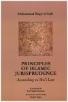 Principles of Islamic Jurisprudence [translated] by Muhammad Baqir al-Sadr from  in  category