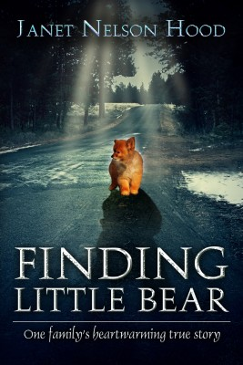 Finding Little Bear