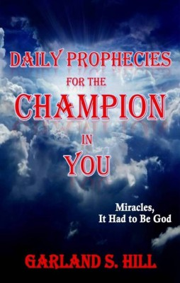 Daily Prophecies for the Champion in You by Garland S Hill from Bookbaby in Language & Dictionary category