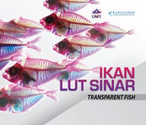 Ikan Lutsinar by Terjemahan: Ying Geat Siah, Mazlan Abd Ghaffar from  in  category