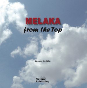 MELAKA FROM THE TOP by Dennis De Witt from  in  category