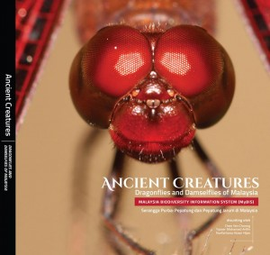 Ancient Creatures : Dragonflies and Damselflies of Malaysia by Chee Yen Choong, Yasser Mohamed Arifin & Nurfarhana Hizan Hijas from CORE TEAM NATIONAL BIODIVERSITY CENTRE in Science category