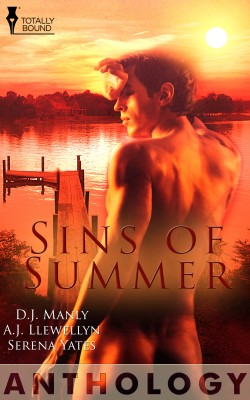 Sins of Summer by A.J. Llewellyn from Vearsa in Romance category