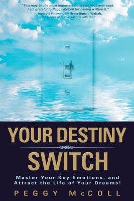 Your Destiny Switch by McColl, Peggy from Vearsa in Lifestyle category