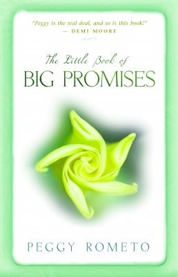 The Little Book of Big Promises by Peggy Rometo from Vearsa in Religion category