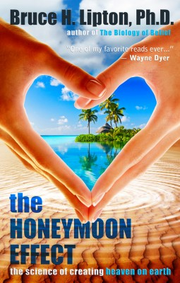 The Honeymoon Effect by Bruce H. Lipton PhD from Vearsa in Religion category