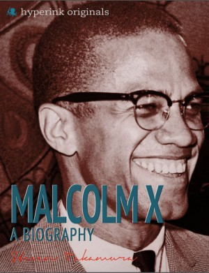 Malcolm X: A Biography by Steven Takamura from Vearsa in Autobiography & Biography category