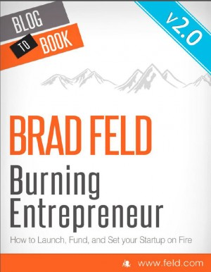 Brad Feld's Burning Entrepreneur - How to Launch, Fund, and Set Your Start-Up On Fire by Brad Feld from  in  category