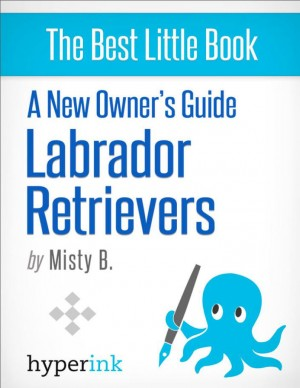 A New Owner's Guide to Labrador Retreivers by Misty  B. from Vearsa in General Novel category
