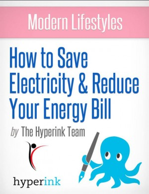 Modern Lifestyles: How to Save Electricity and Reduce Your Energy Bill by The Hyperink Team from Vearsa in General Novel category