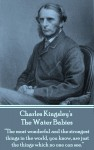 The Water Babies by Charles Kingsley from  in  category
