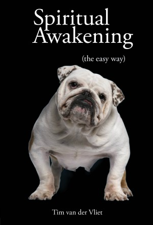 Spiritual Awakening (The Easy Way) by Tim van der Vliet from Vearsa in Religion category