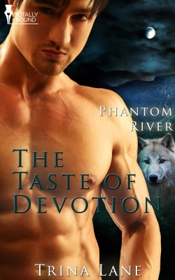 The Taste of Devotion by Trina Lane from Vearsa in Romance category