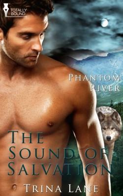 The Sound of Salvation by Trina Lane from Vearsa in Romance category