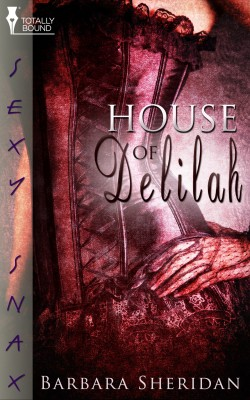 House of Delilah by Barbara Sheridan from Vearsa in Romance category