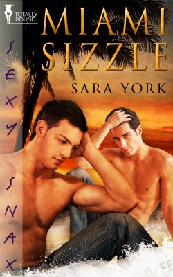 Miami Sizzle by Sara York from Vearsa in Romance category