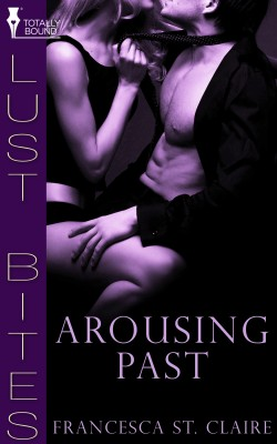 Arousing Past by Francesca St. Claire from Vearsa in Romance category