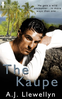 The Kaupe by A.J. Llewellyn from Vearsa in Romance category
