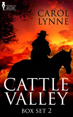 Cattle Valley Box Set 2 by Carol Lynne from Vearsa in Romance category