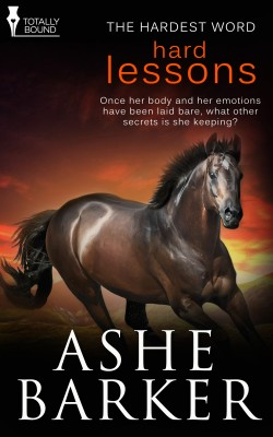 Hard Lessons by Ashe Barker from Vearsa in Romance category