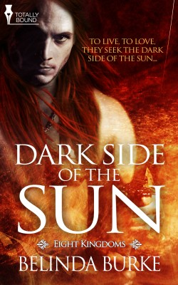 Dark Side of the Sun by Belinda Burke from Vearsa in Romance category