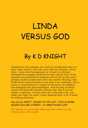 Linda Versus God by K D Knight from Vearsa in General Novel category