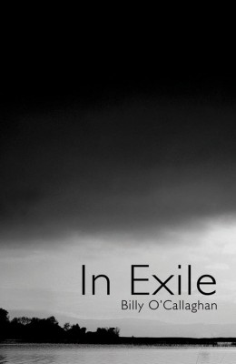 In Exile by BIlly O'Callaghan from Vearsa in General Novel category