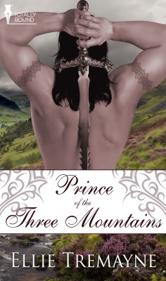 Prince of the Three Mountains by Ellie Tremayne from Vearsa in Romance category