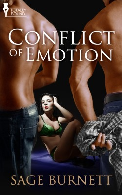 Conflict of Emotion by Sage Burnett from Vearsa in Romance category