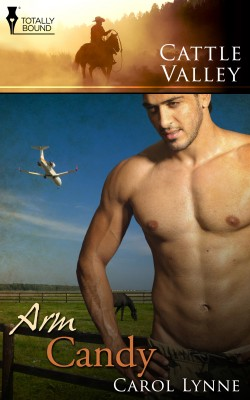 Arm Candy by Carol Lynne from Vearsa in Romance category