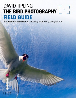 The Bird Photography Field Guide by David Tipling from Vearsa in General Academics category