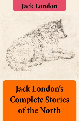 Jack London's Complete Stories of the North by Jack London from Vearsa in General Novel category
