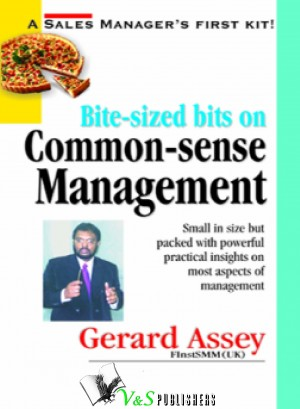 Bite-sized bits on Common Sense Management by Gerard Assey from Vearsa in Business & Management category