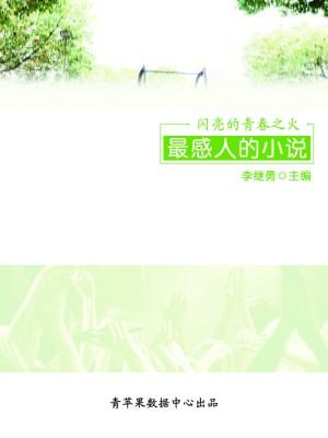 闪亮的青春之火:最感人的小说 by 李继勇 from  in  category