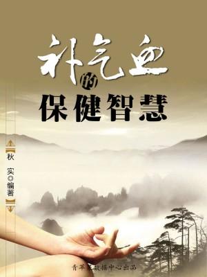 补气血的保健智慧(生活保健系列30本) by 秋实 from Green Apple Data Center in Teen Novel category