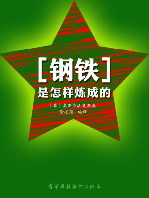 钢铁是怎样炼成的(经典世界名著) by 奥斯特洛夫斯基,谢志强 from Green Apple Data Center in Comics category